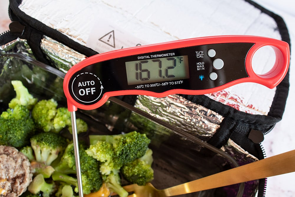 hotlogic mini internal temperature of beef with thermometer