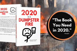 2020 is a dumpster fire book jacket over dumpster fire image